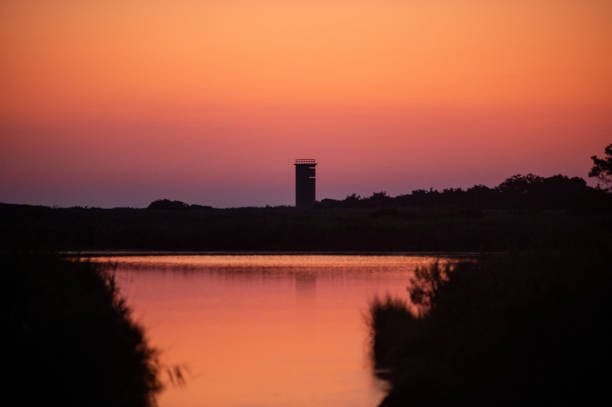 Gordons Pond Tower stock photo