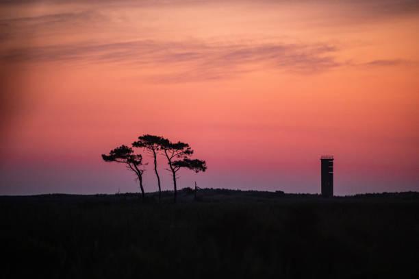 Gordons Pond Tree and Tower stock photo