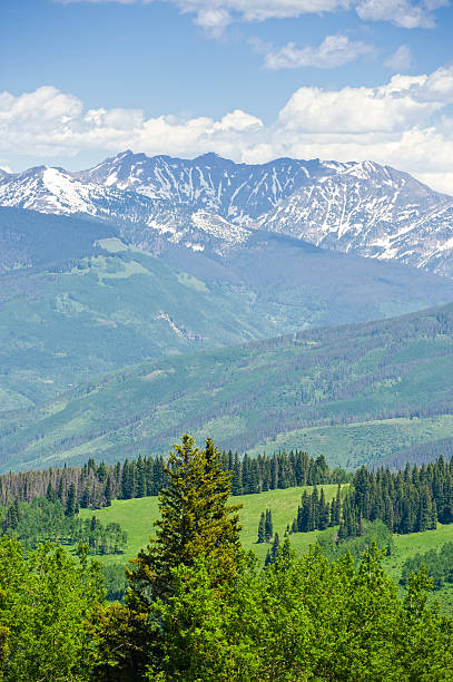 Gore Range Mountains in Summer Colorado USA Gore Range Mountains in Summer Colorado USA.  Captured as a 14-bit Raw file. Edited in ProPhoto RGB color space. beaver creek colorado stock pictures, royalty-free photos & images