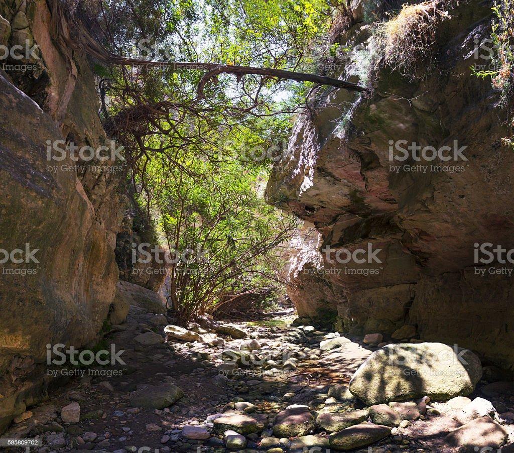 Gorge Avakas. Akamas peninsula. Cyprus. stock photo