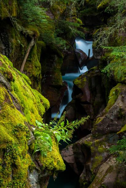 gorge green montana stock photo