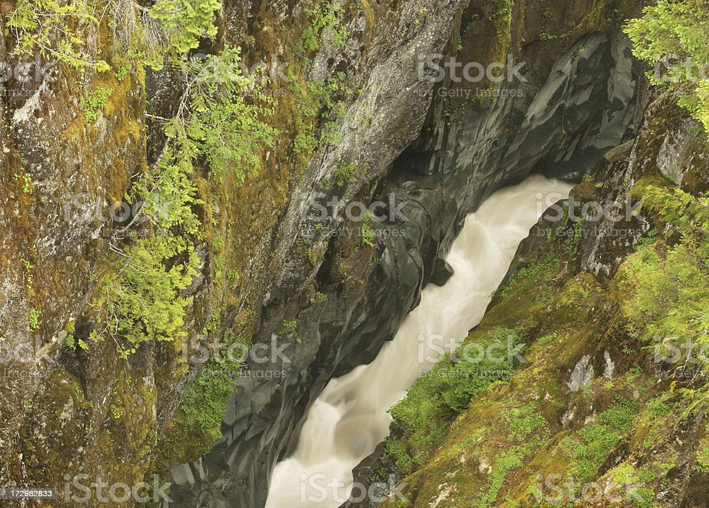 Gorge River Canyon Moss Wilderness royalty-free stock photo