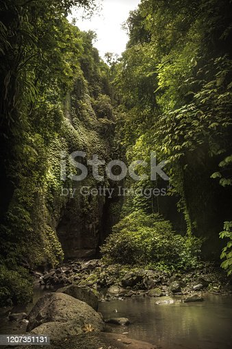 Gorge with rocky vaults covered with lush foliage plants nearby beautiful Bali waterfall Sekumpul in dark tropical forest on Bali Indonesia