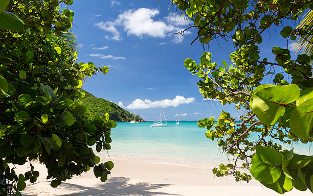 Gorgeous beach at Anse Marcel resort in St Martin stock photo