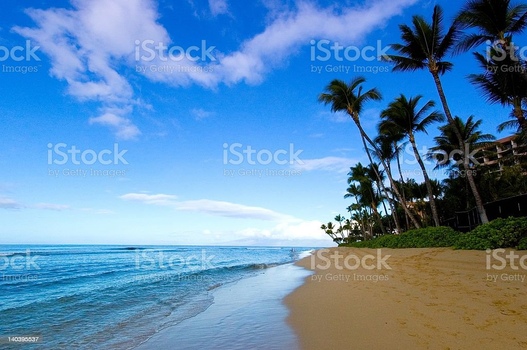 Gorgeous Beach View royalty-free stock photo