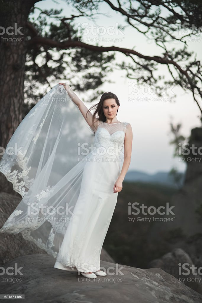 Gorgeous bride in elegant dress holding bouquet posing near forest photo libre de droits