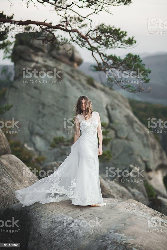 Gorgeous bride in elegant dress holding bouquet posing near forest photo libre de droits