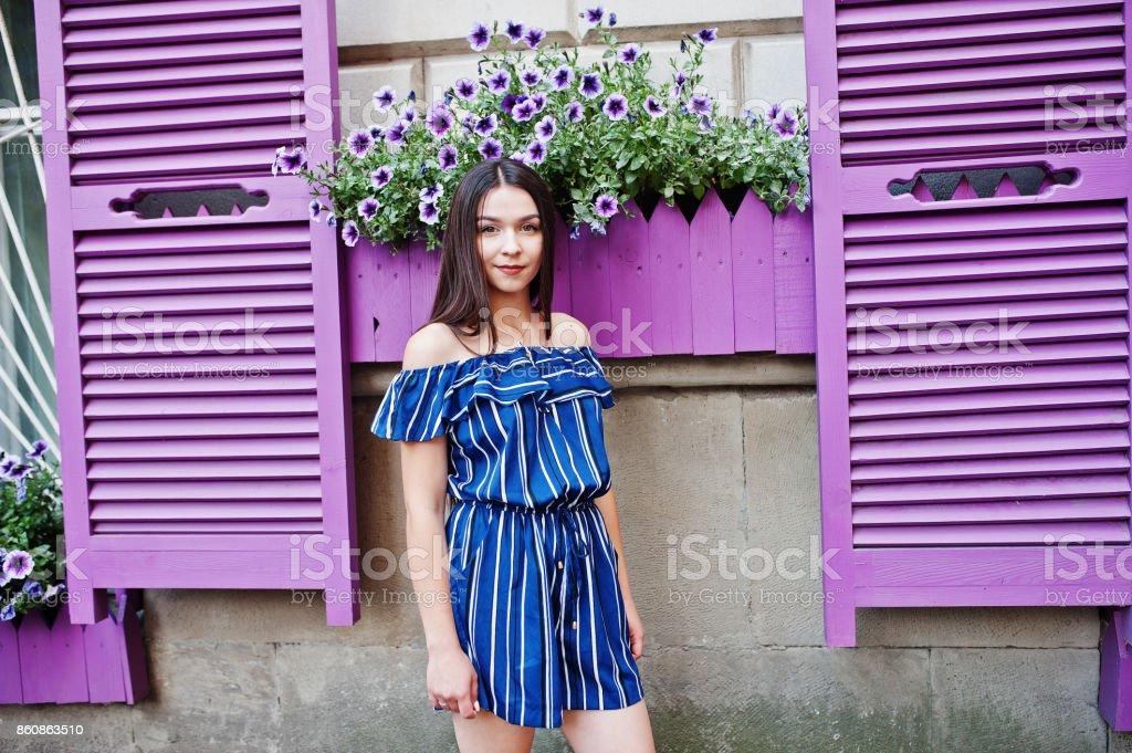 Gorgeous Brunette Girl Portrait Background Violet Windows Stock