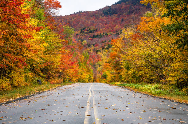 Gorgeous Fall Colors along a Scenic Mountain Road stock photo