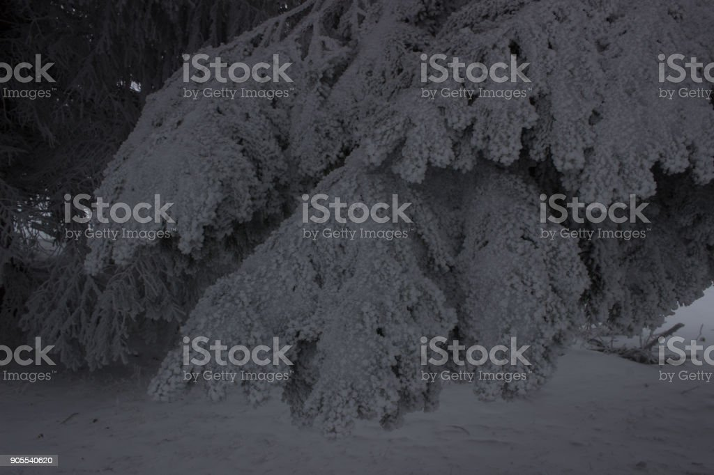 Gorgeous frosty and icy views from Smirnenski hut, Belmeken, Rila mountain, Bulgaria stock photo