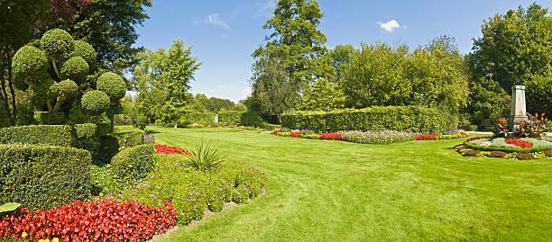 magnifique jardin vert herbe - buis photos et images de collection