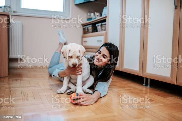 Gorgeous girl playing with puppy indoors picture id1032612760?b=1&k=6&m=1032612760&s=612x612&h=bbtkxljo5f sr16i6lg6v0ulhw8005loxtzy6cvkym4=