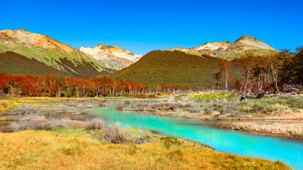 Wunderschöne Landschaft von Patagonien Feuerland-Nationalpark im Herbst – Foto