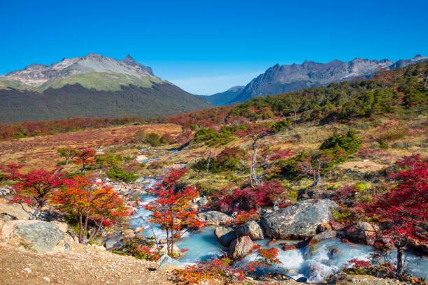 Wunderschöne Landschaft von Patagonien Feuerland Nationalpark – Foto