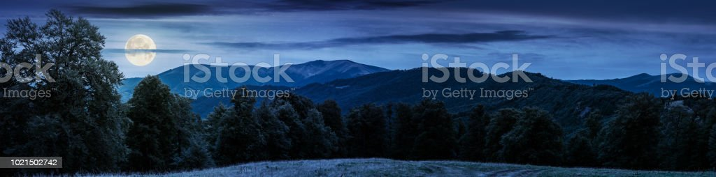 gorgeous mountain panorama in summer at night stock photo