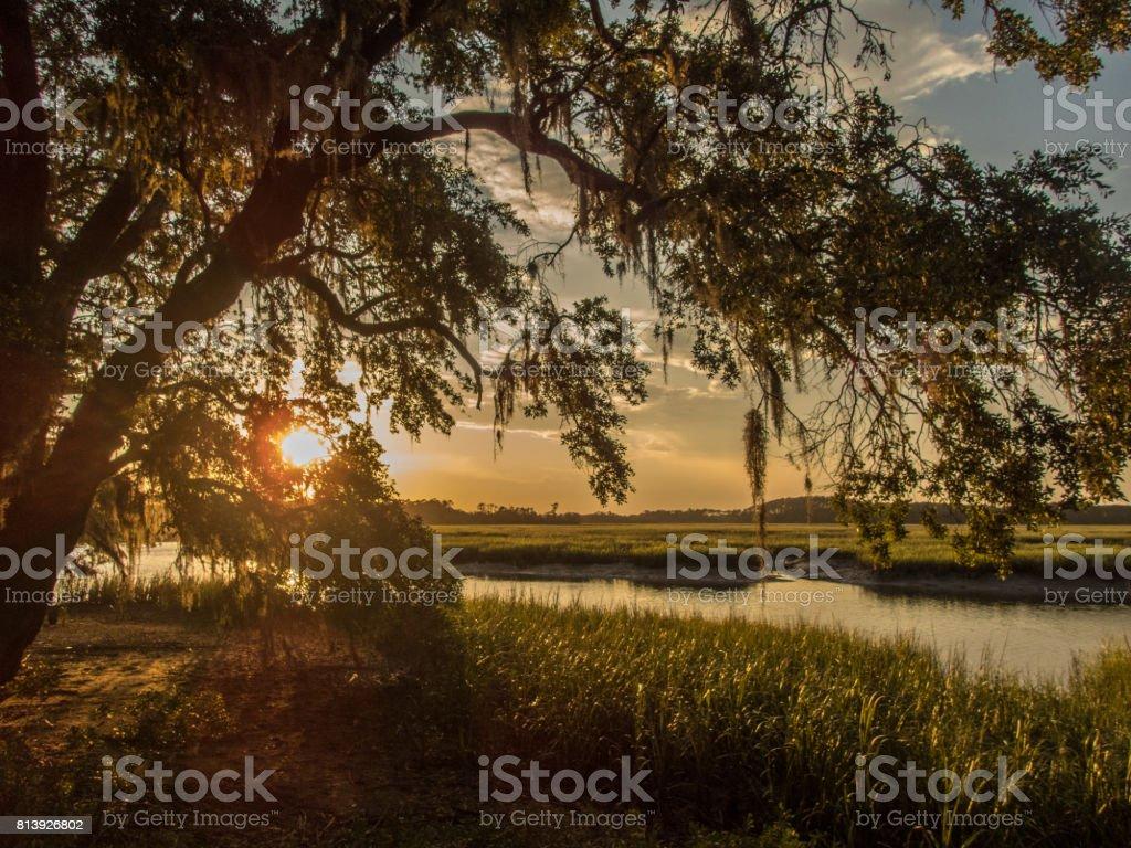 Gorgeous sunset on southern marsh stock photo