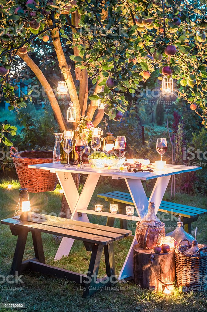 Gorgeous table full of wine and fruits in garden - foto de acervo