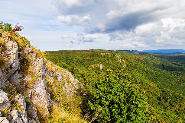 Gorgeous view of Bukk forest from mountain top stock photo