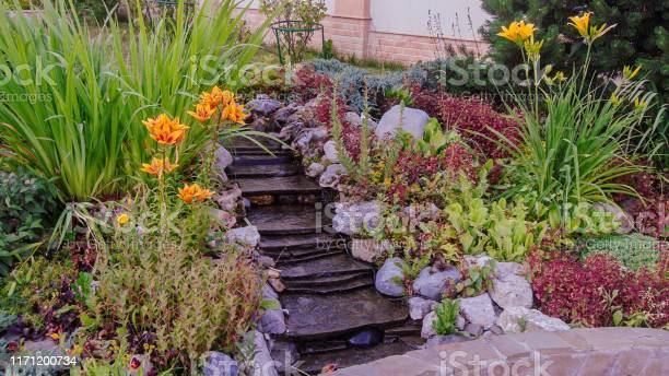 Gorgeous View Of Exterior Of A Private Garden Landscape Design Called Alpine Slide Decorative Waterfall Colorful Rocks And Green Plants Summer Day Sweden Europe Stock Photo - Download Image Now