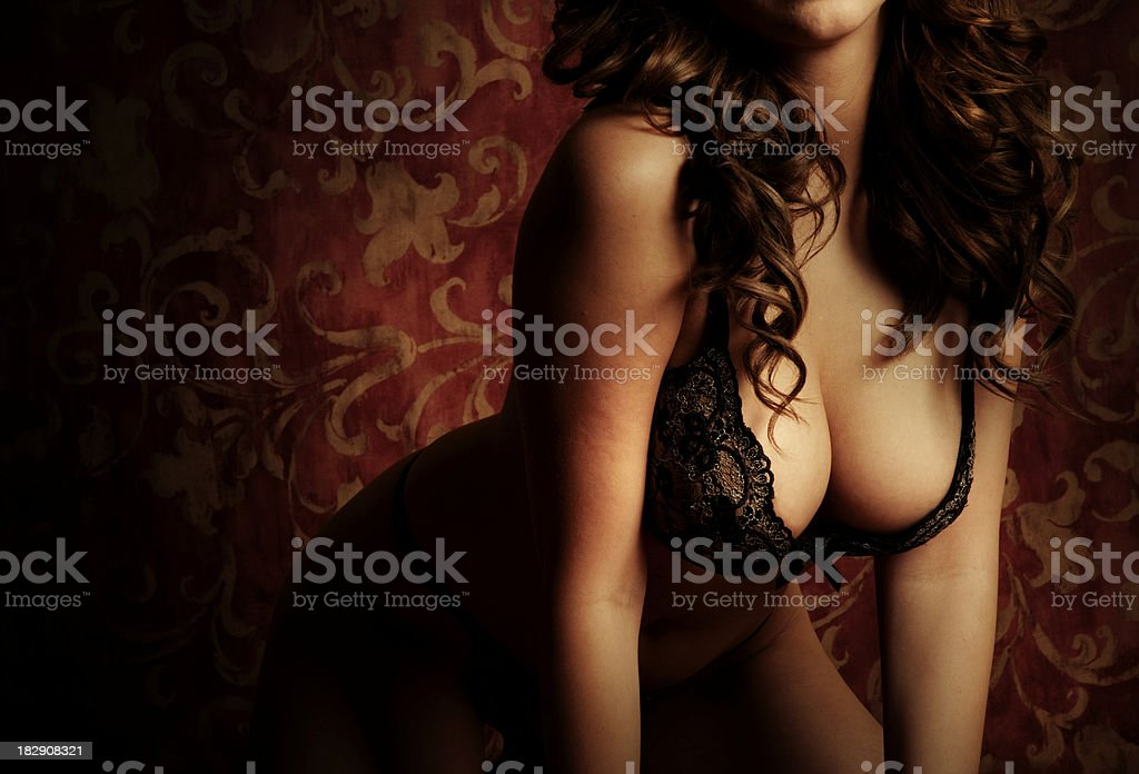 Gorgeous Voluptuous  Brunette Model in Lingerie royalty-free stock photo