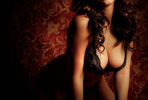 Gorgeous Voluptuous  Brunette Model in Lingerie stock photo