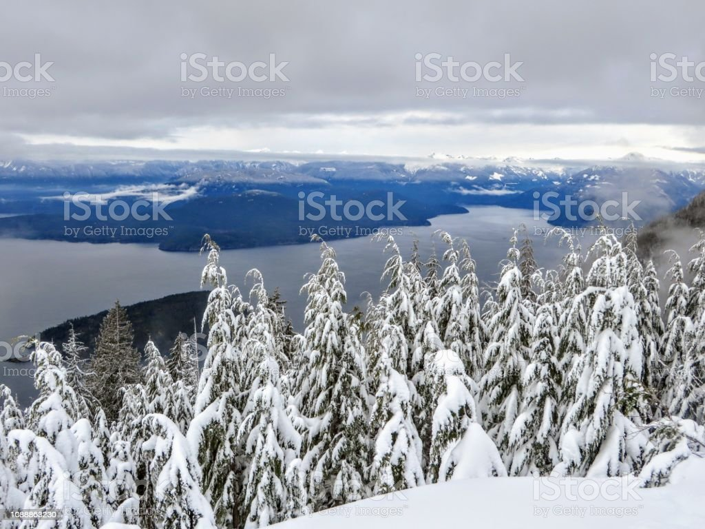 A gorgeous winter landscape on Cypress Mountain overlooking the ocean below stock photo