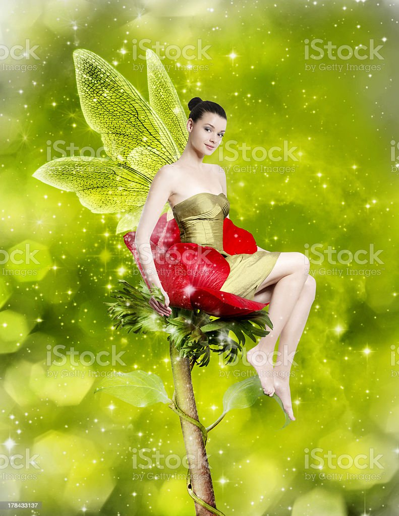 Gorgeous young woman as spring fairy stock photo