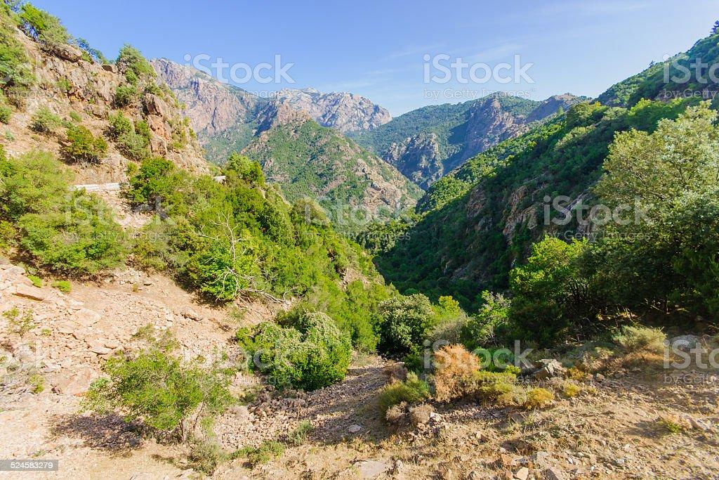 Gorges de Spelunca stock photo