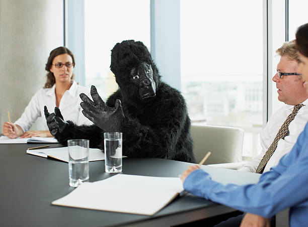 gorilla and businesspeople having meeting in conference room - gorilla stock photos and pictures