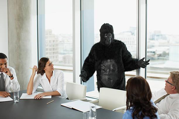 gorila y los empresarios con reunión en sala de conferencias - gorila fotografías e imágenes de stock