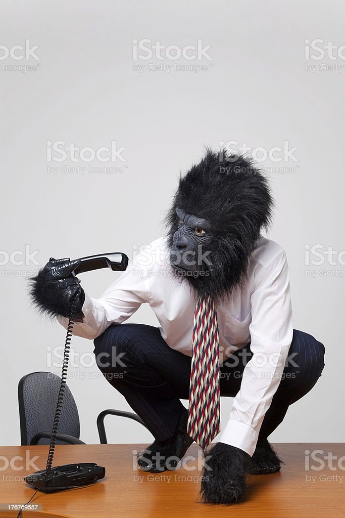 Gorilla and telephone stock photo