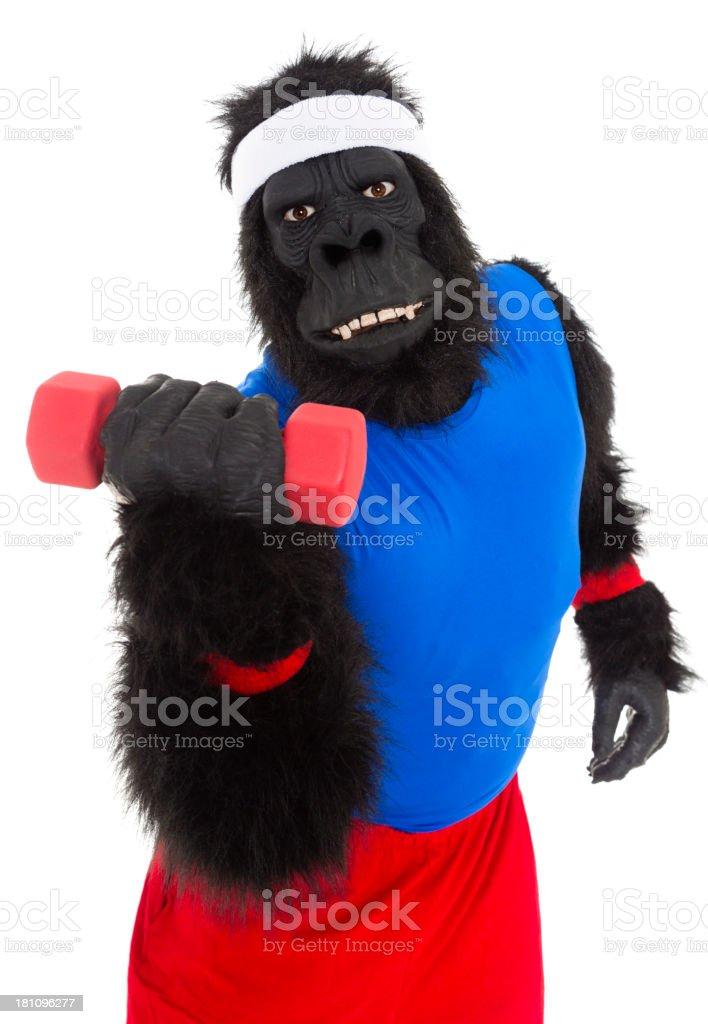 https://media.istockphoto.com/photos/gorilla-athlete-picture-id181096277