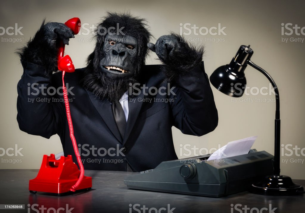 Gorilla Businessman stock photo