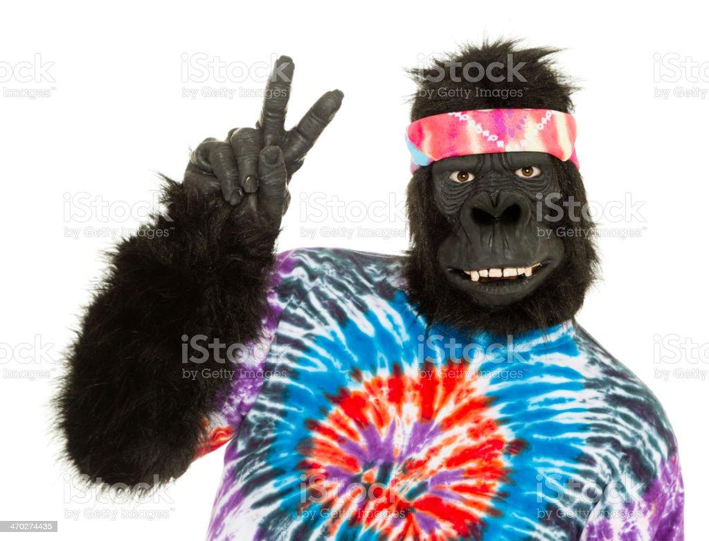 Gorilla Hippie stock photo