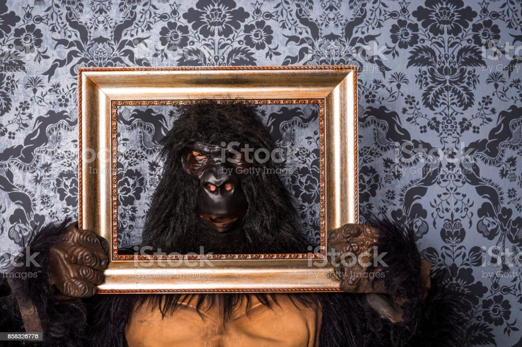Gorilla im studio – Foto