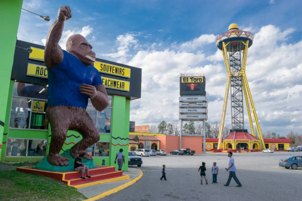 Gorilla Statue at South of the Border Tourist attraction. Dillon, SC, USA - February 7, 2017. The tourist attraction, 'South of the Border,' is a popular roadside destination located along Interstate 95 near Dillon, South Carolina. monkey stock pictures, royalty-free photos & images