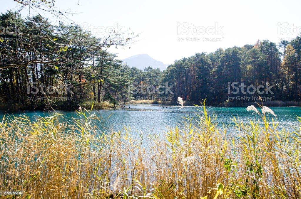 Goshiki-numa in Autumn, Urabandai, Fukushima, Japan - Bishamon-numa stock photo