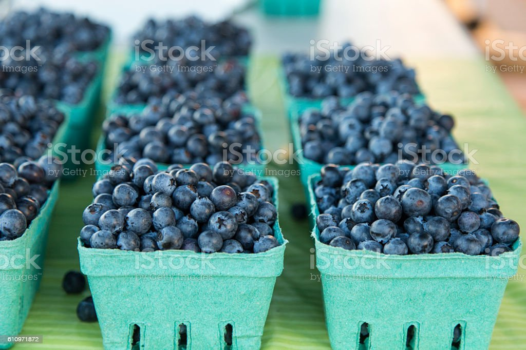 Got Blueberry? stock photo