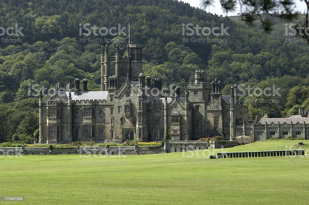 Gothic Castle royalty-free stock photo