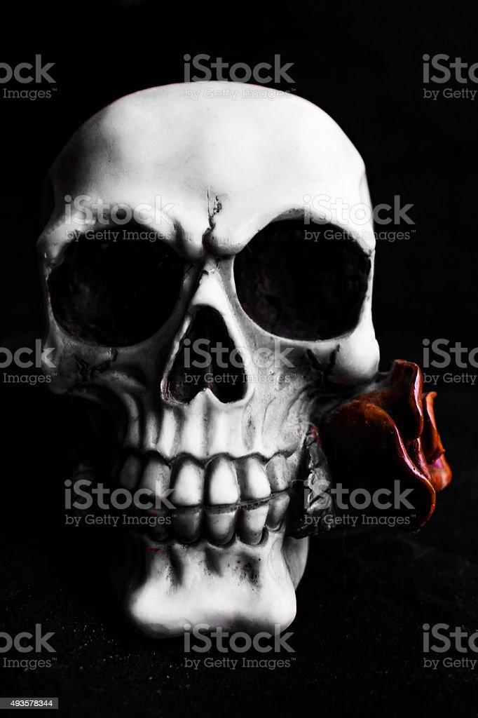 Gothic Skull stock photo