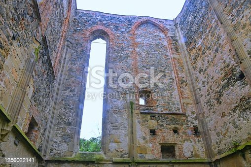 Gothic window. Ruins of medieval convent. Convent Rosa Coeli at Dolni Kounice, Czechia.