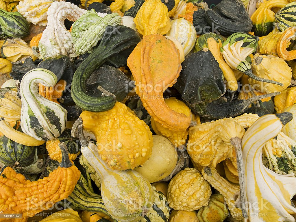 Gourd Background royalty-free stock photo