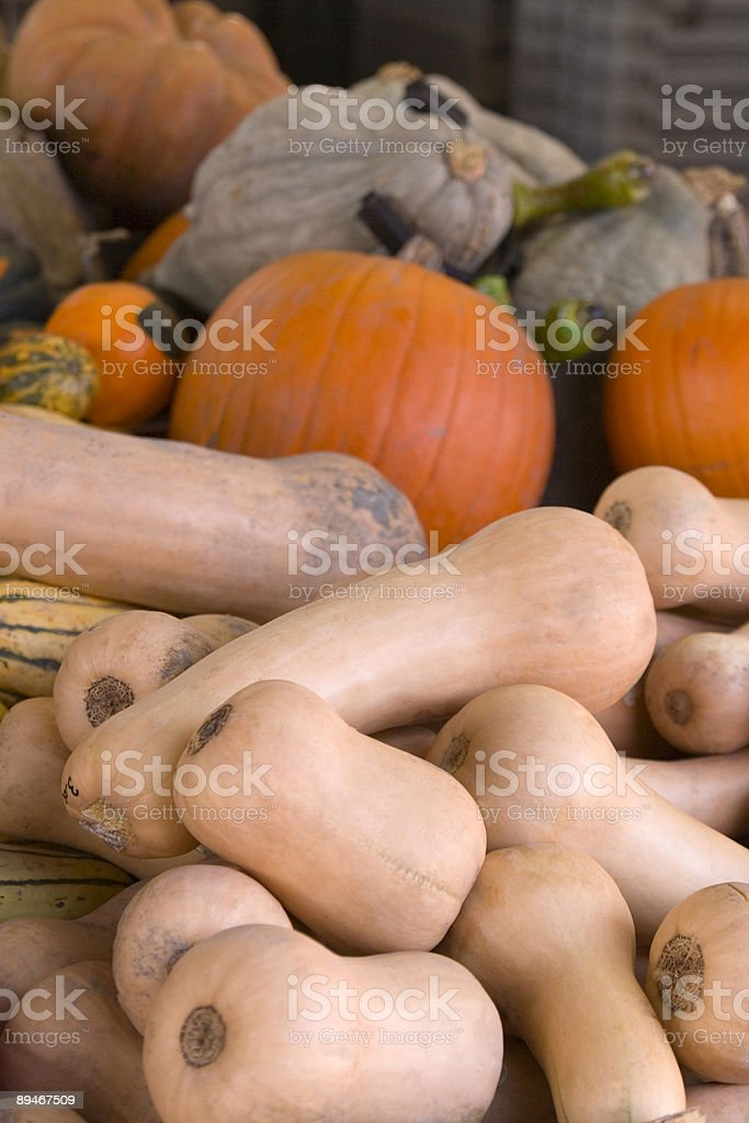 Gourds royalty-free stock photo