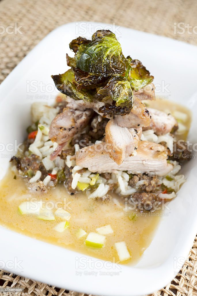 Gourmet Chicken Over Rice royalty-free stock photo