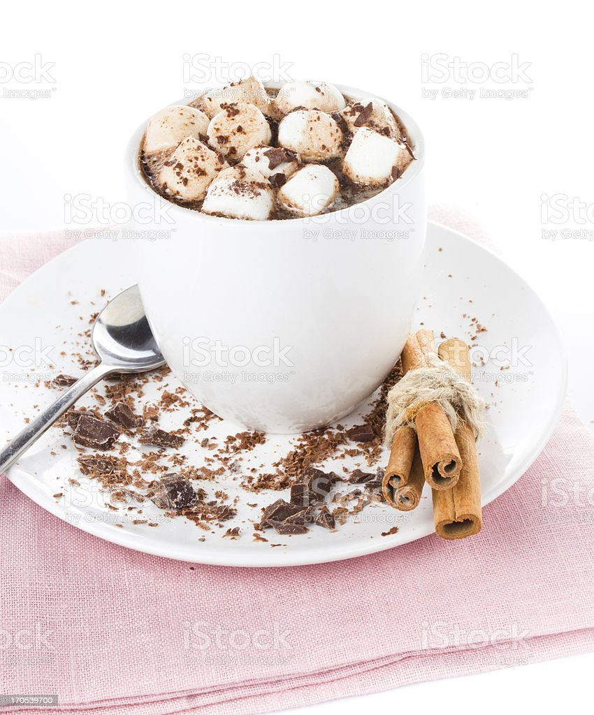 Gourmet Hot chocolate with mini marshmallow  and cinnamon royalty-free stock photo