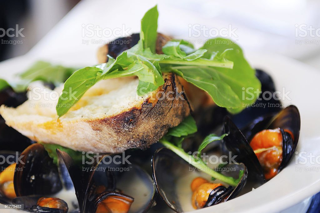 Gourmet mussels with crisp green salad royalty-free stock photo