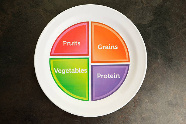 us government recommended food portion plate - portion bildbanksfoton och bilder