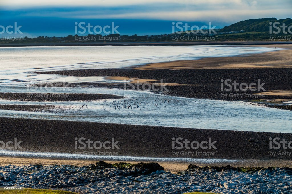 gower stock photo
