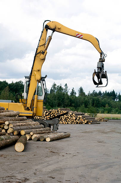 Grab loader in saw mill stock photo