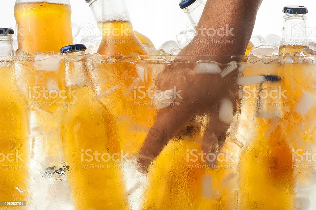Grabbing an ice cold beer from a cooler stock photo